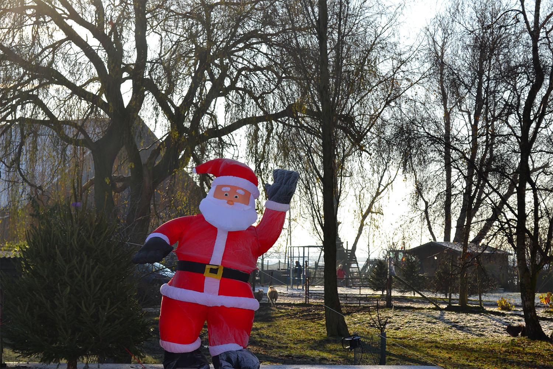 Nordmann Excellent kerstbomen Nieuw-Vennep