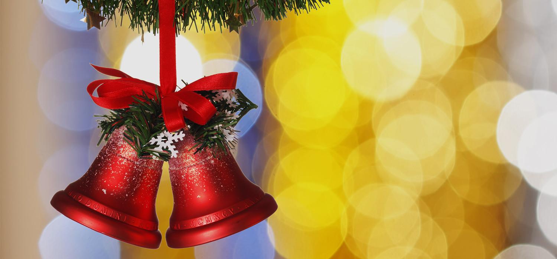 Veelgestelde vragen over Nordmann Excellent kerstbomen in Nieuw-Vennep