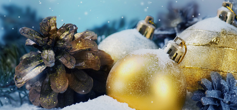 Kerstboom bezorgen in regio Nieuw-Vennep